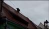 Imaginea articolului Detaşat după scandalul URSULUI împuşcat în oraş, şeful Poliţiei Sibiu a revenit la în funcţia deţinută anterior. Motivarea instituţiei pentru o asemenea decizie