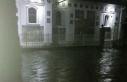 Imaginea articolului Aproximativ 80 de gospodării din judeţul Caraş-Severin, afectate de inundaţii