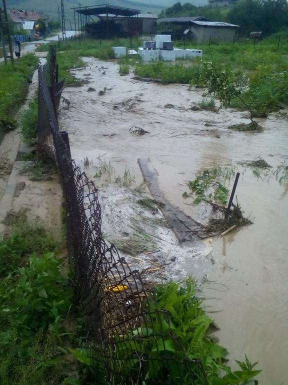 FOTO Gospodării şi drumuri inundate într-o comună din Alba, după o ploaie torenţială şi căderi de grindină