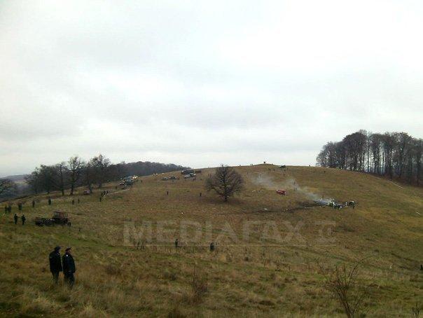 Stâna unui cioban din Argeş a fost atacată de urs, care a omorât câteva oi