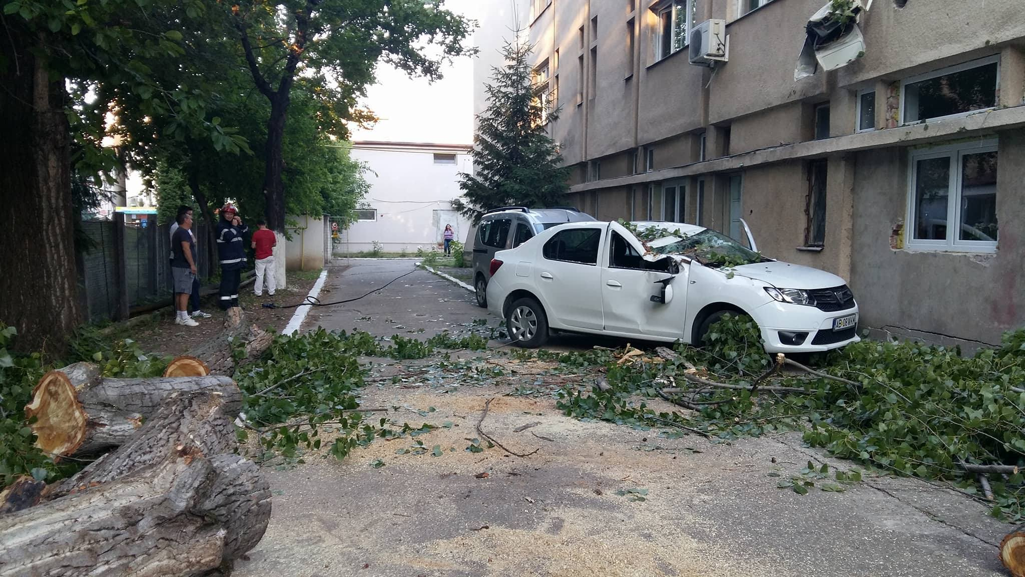FOTO Spitalul din Alba Iulia a rămas fără gaz, după ce un copac a căzut pe o conductă şi a fisurat-o
