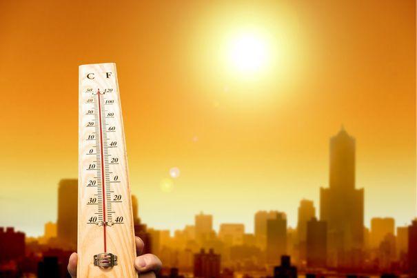 Imaginea articolului ANM: Posibil cod roşu de caniculă vineri. Se anticipează 42, 43 de grade Celsius