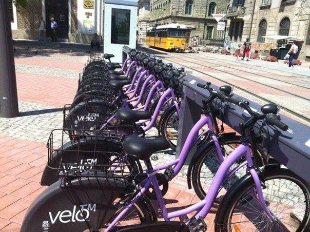 Imaginea articolului Biciclete închiriate GRATUIT pentru turiştii străini care vizitează Timişoara