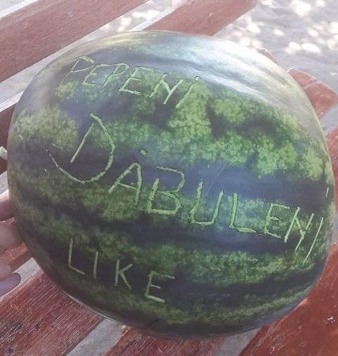 Pepenii de Dăbuleni au umplut pieţele şi Facebook-ul; agricultorii se tem că nu îşi scot investiţia