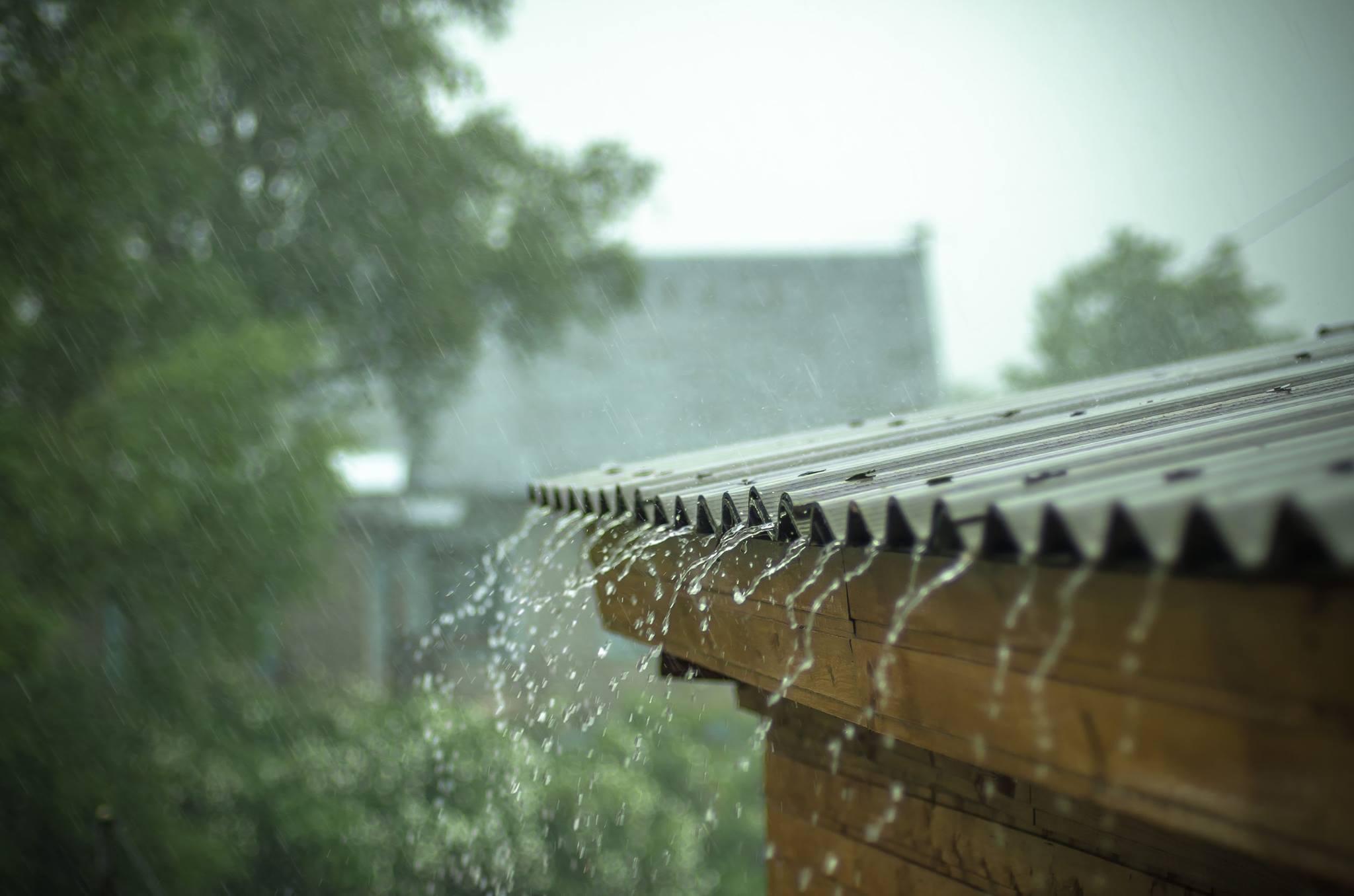 COD GALBEN de ploi pentru patru judeţe