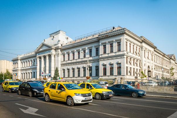 Imaginea articolului Amenajarea unui drum din Craiova, realizată de Tel Drum, anchetată de Parchetul General / Olguţa Vasilescu: Furtună într-un pahar cu apă, un dosar care se poate soluţiona maxim cu o amendă
