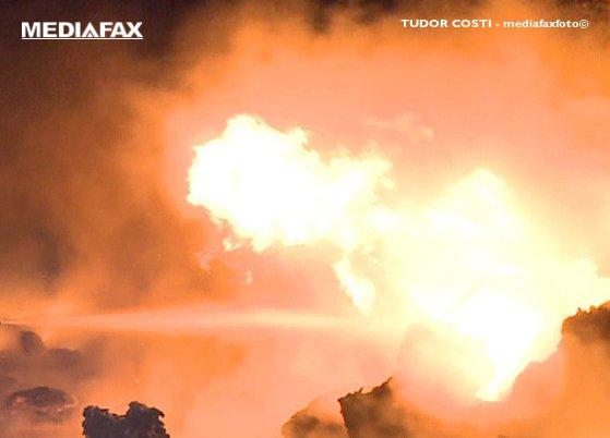 Imaginea articolului Furtună în Apuseni |  2.500 de gospodării nu au curent. O casă a ars în urma unui incendiu provocat de trăsnet. Mai mulţi brazi, doborâţi de vijelie