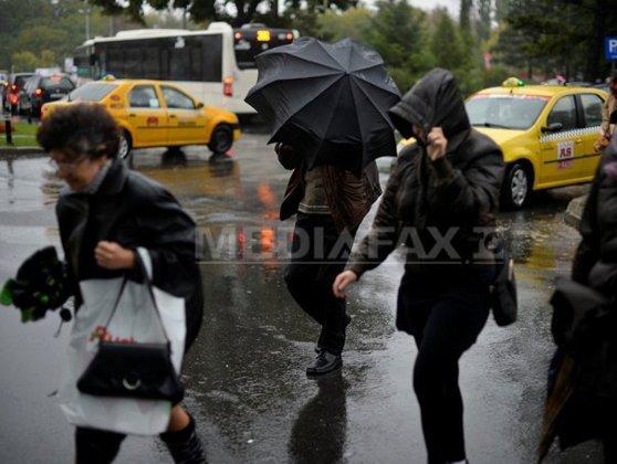 Imaginea articolului Vremea rea a făcut ravagii în toată ţara | Bilanţul IGSU: Zeci de arbori au căzut pe maşini şi carosabil, imobile, curţi şi subsoluri inundate
