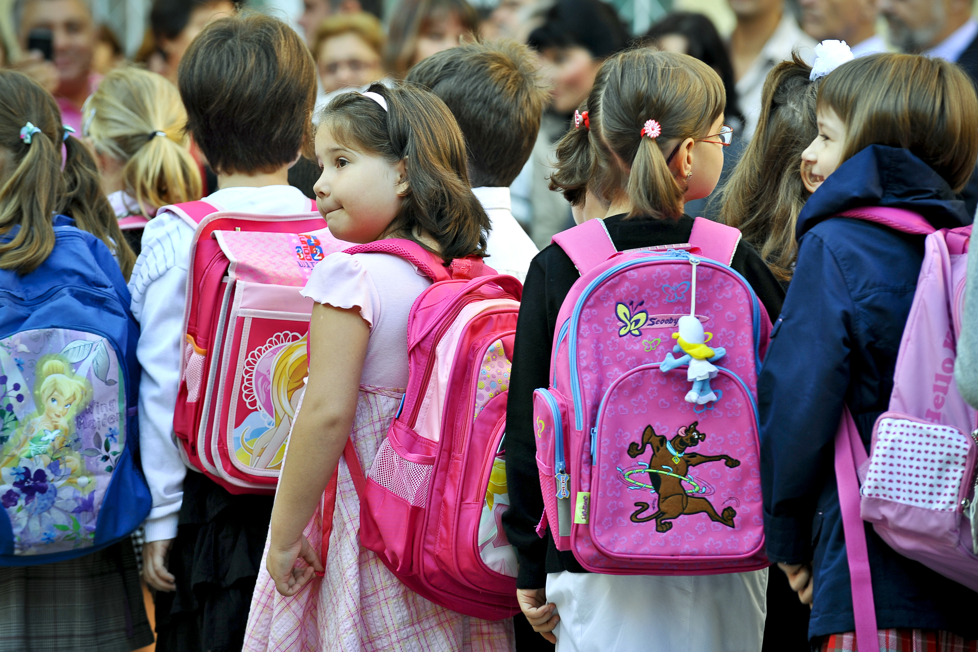 Liviu Pop: Elevul nu este obligat să vină cu manualul la şcoală, dar ministerul trebuie să i-l asigure / Greutatea ghiozdanului, dată de auxiliare şi caiete, cele neaprobate vor fi eliminate