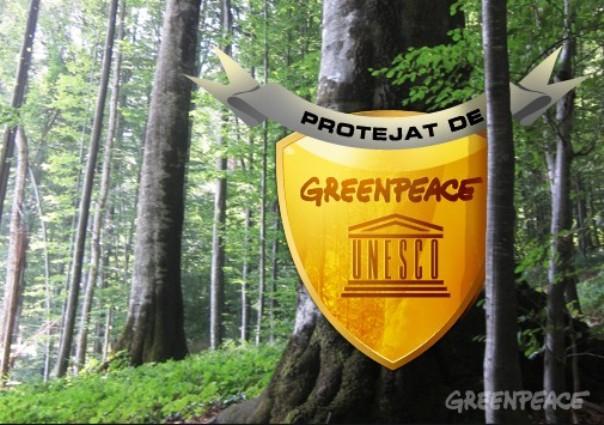 Scrisoare Greenpeace către preşedinte şi CSAT: Aplicaţia `Inspectorul pădurii` nu trebuie închisă