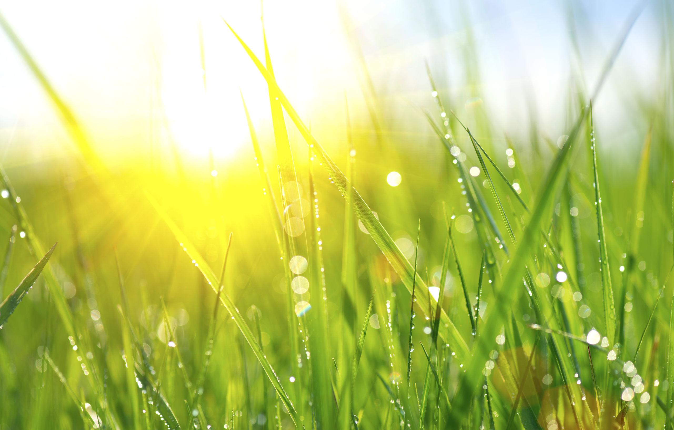 Prognoza meteo pentru luni şi marţi   Temperaturile maxime, între 23 - 34 de grade Celsius / Zonele în care va ploua