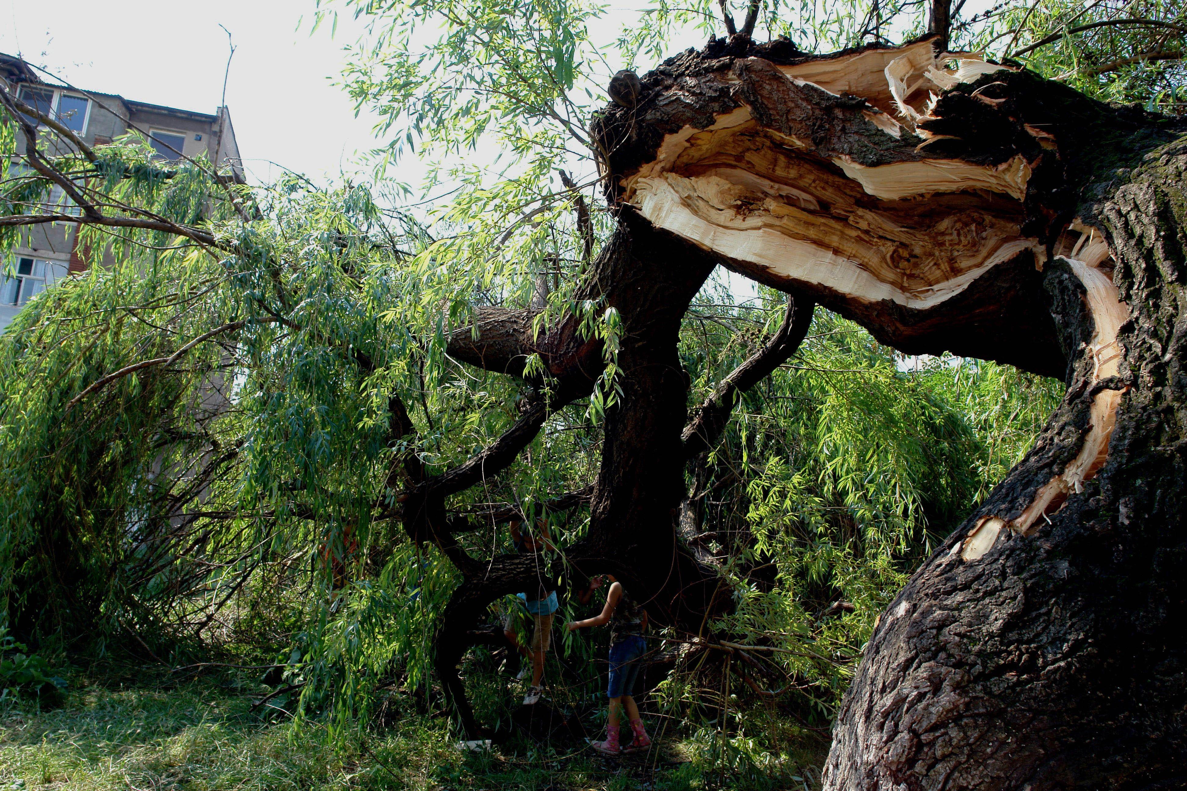 Mai mult de 5000 de persoane din Prahova au rămas fără curent electric în urma unei furtuni puternice