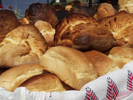 """Imaginea articolului Povestea """"Pitei de Pecica"""", pâinea preferată a lui Ceauşescu. Brandul, promovat la Praznicul de Pită Nouă"""", sărbătoarea care marchează încheierea recoltării grâului"""