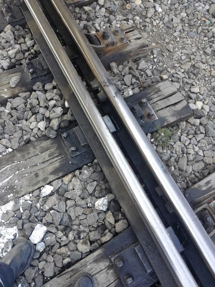 TRAGEDIE lângă Bucureşti: O minoră a murit după ce a fost lovită de tren. Alte trei persoane au fost găsite moarte pe linie ferată