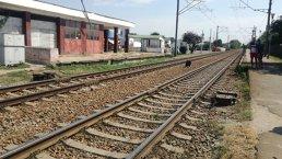 O nouă TRAGEDIE pe calea ferată: Două persoane au fost lovite de tren în judeţul Timiş. Traficul feroviar, întrerupt
