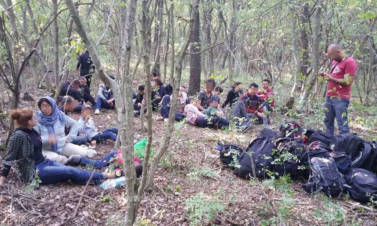 Creşte numărul refugiaţilor care încearcă să intre ilegal în România: 25 de imigranţi sirieni şi trei călăuze bulgare, depistaţi de poliţiştii de frontieră