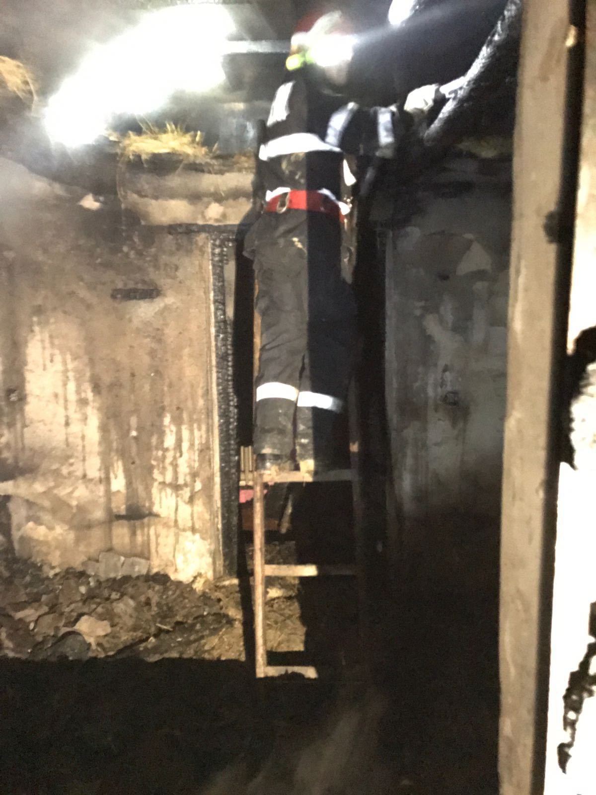 FOTO, VIDEO   Incendiu urmat de explozii la un depozit de butelii din judeţul Vaslui