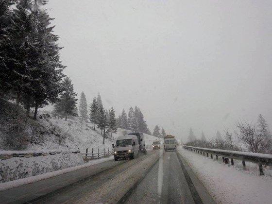 Imaginea articolului Ninsoare în august, în judeţul Maramureş. Stratul de zăpadă ajunge la 3 centimetri