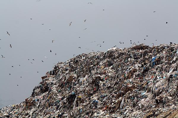 Licitaţie pentru platforme de gunoi îngropate, la Braşov
