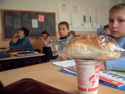 Anul şcolar începe în judeţul Suceava fără corn, după ce Consiliul Judeţean a anulat licitaţia. Ce motive au invocat autorităţile