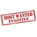 """Imaginea articolului Primele patru persoane """"Most Wanted"""" pe site-ul Europol sunt români. Bivolaru, în fruntea listei"""