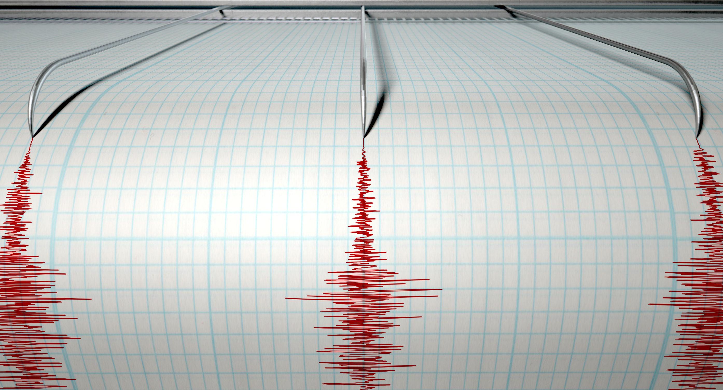 Cutremure cu magnitudinea de 3,1 în Marea Neagră şi de 2,3, în Vrancea