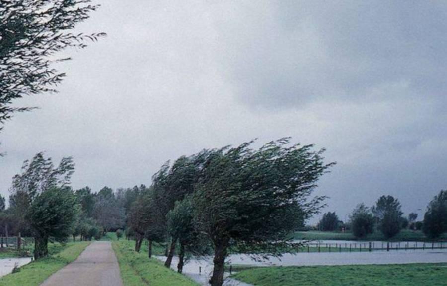 Cod galben de vânt în Constanţa şi Tulcea