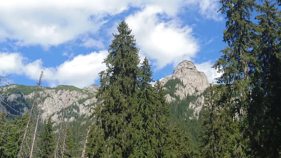Un turist care a urcat pe munte are nevoie de ajutorul salvamontiştilor, din cauza epuizării: `În ciuda vremii foarte bune, starea zăpezii în creastă este destul de problematică`