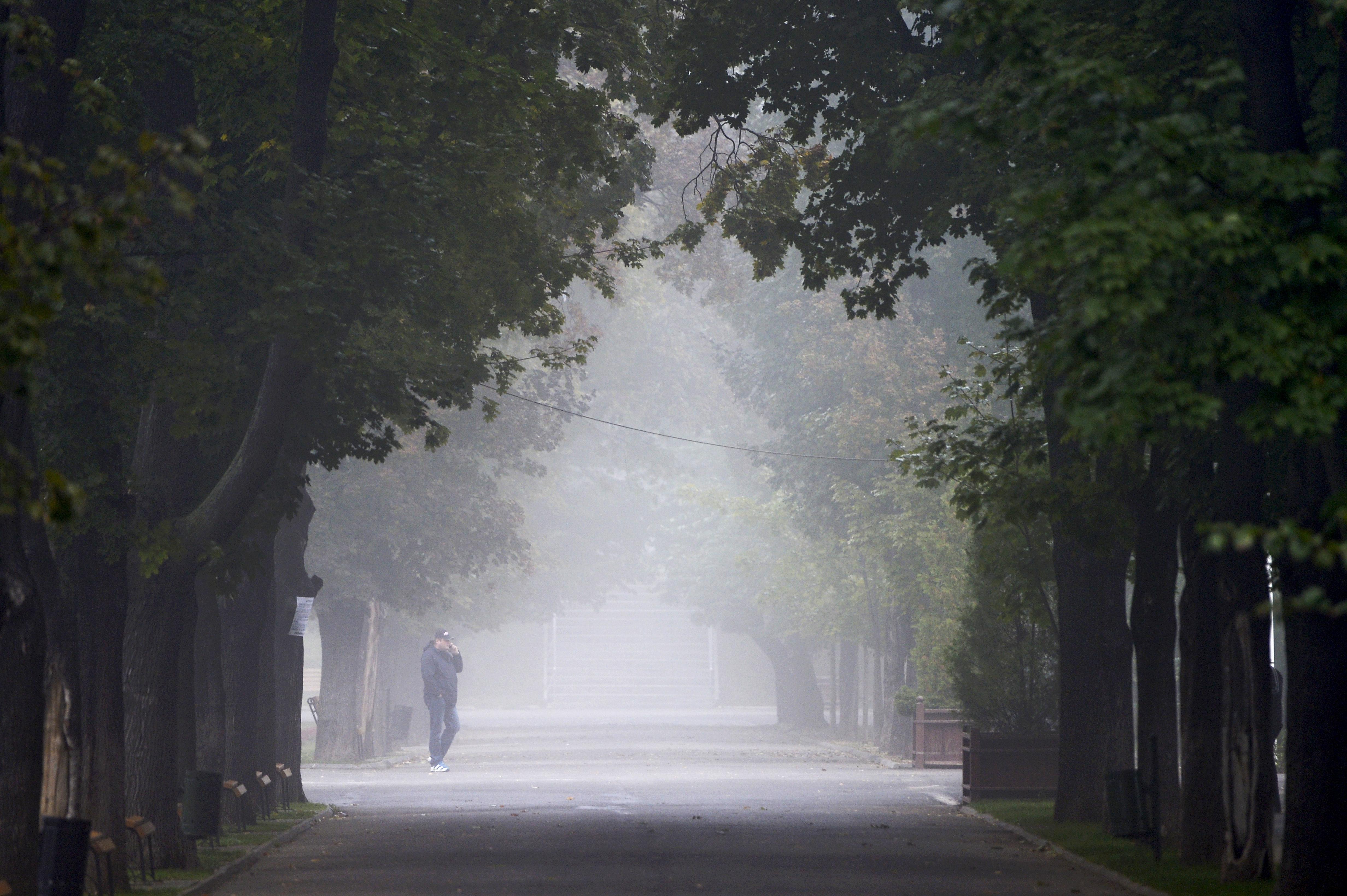 Cod galben de ceaţă în zece judeţe/ Ceaţă densă şi pe autostrăzile A2 şi A4