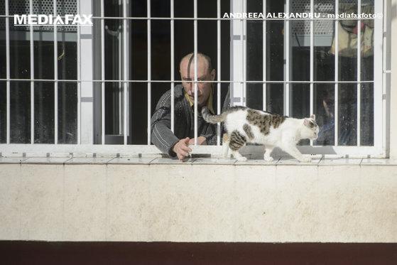 Imaginea articolului Director ANP despre situaţia din penitenciarele din România: Anul viitor ne propunem să dăm drumul la 1.421 locuri noi de cazare. Câte spaţii au fost create în acest an