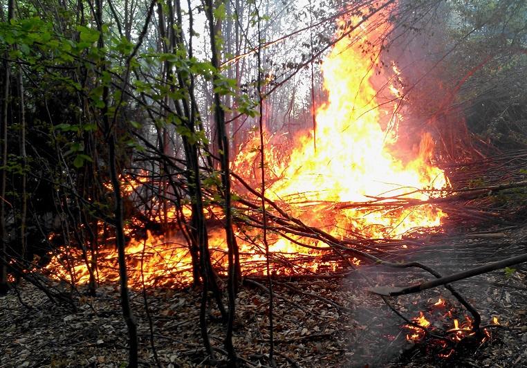 Incendiu de pădure în Munţii Apuseni   Zeci de pompieri şi pădurari se luptă de două zile cu focul