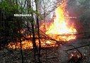 Imaginea articolului Incendiu de pădure în Munţii Apuseni | Zeci de pompieri şi pădurari se luptă de două zile cu focul