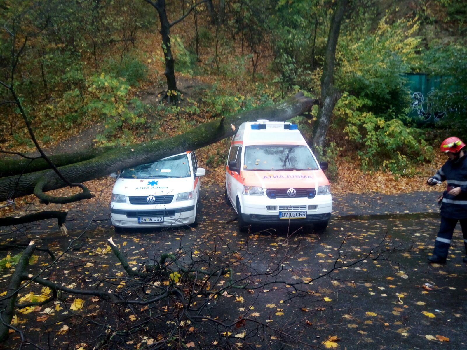 Un copac a căzut peste două ambulanţe în faţa sediului Crucii Roşii Braşov | FOTO, VIDE