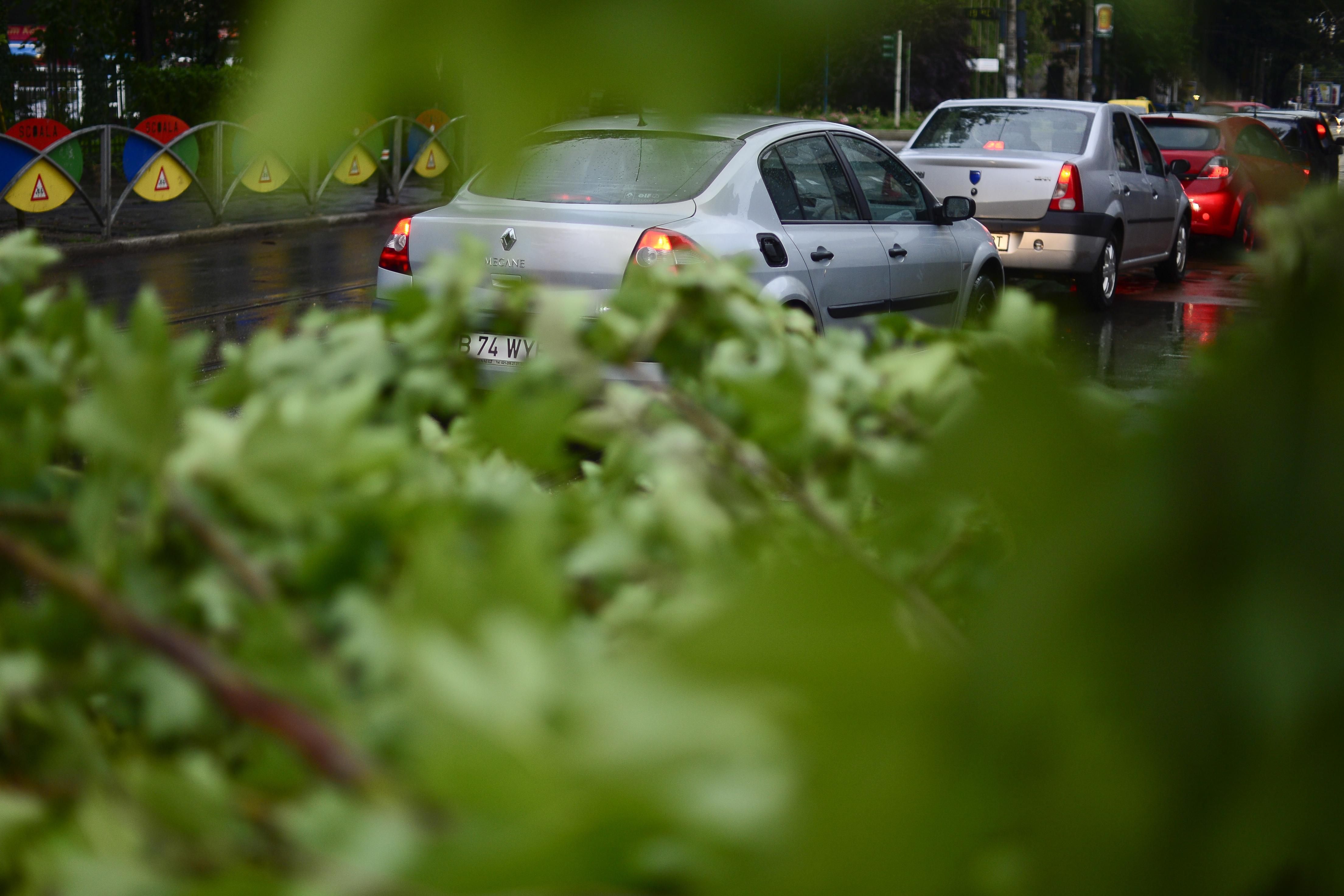 Copac în pericol să cadă la Spitalul Obregia din Capitală. Bolnavii au fost mutaţi