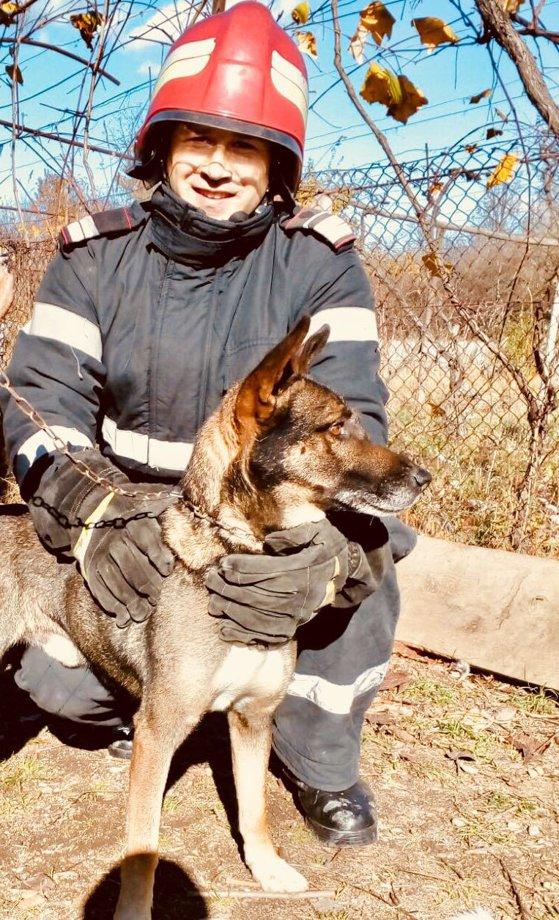 Imaginea articolului Boris, un câine lup, salvat de pompieri după ce a căzut într-o fântână adâncă de 12 metri din Tismana