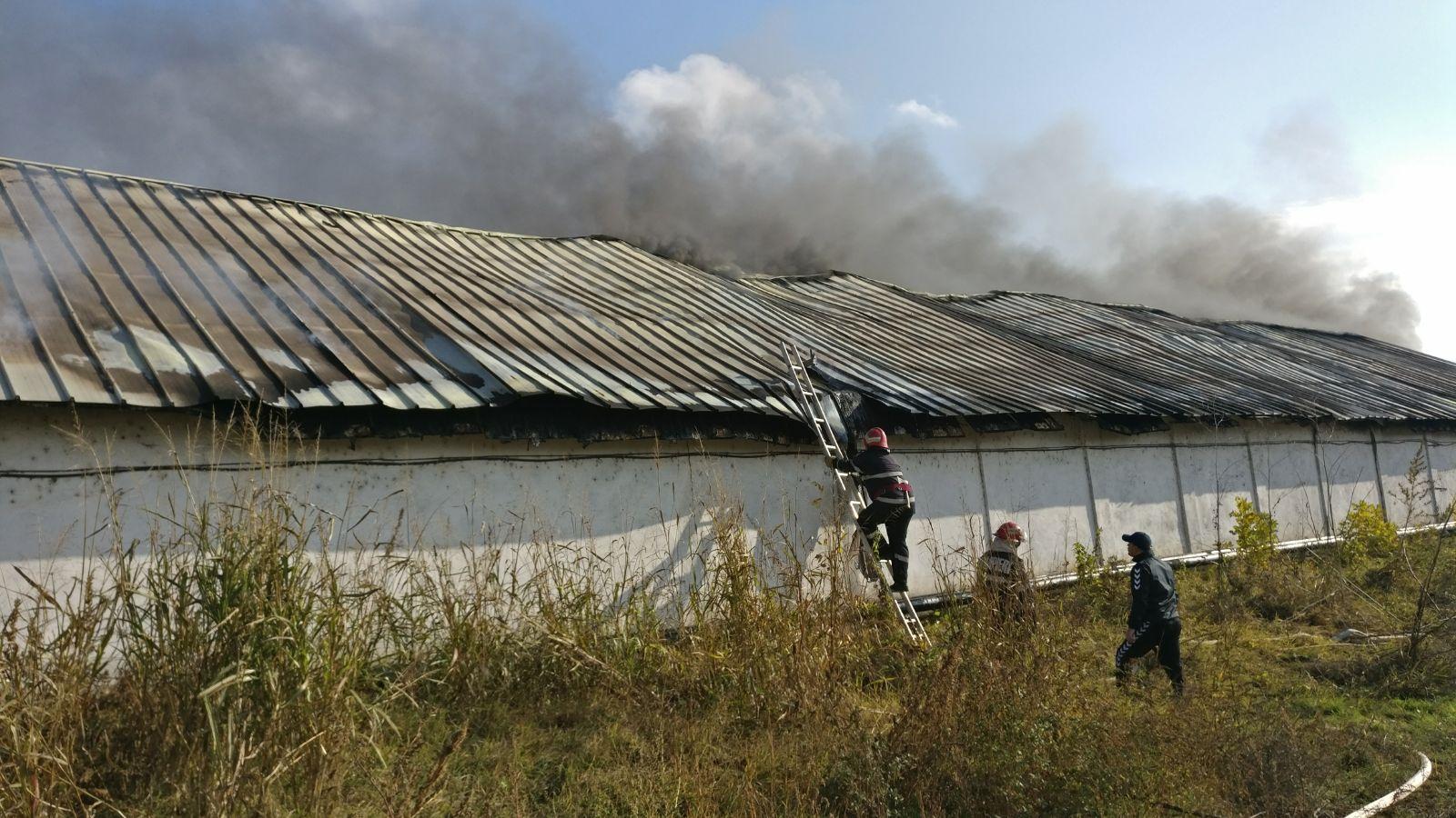 Incendiu puternic la o hală de materiale plastice - FOTO, VIDEO