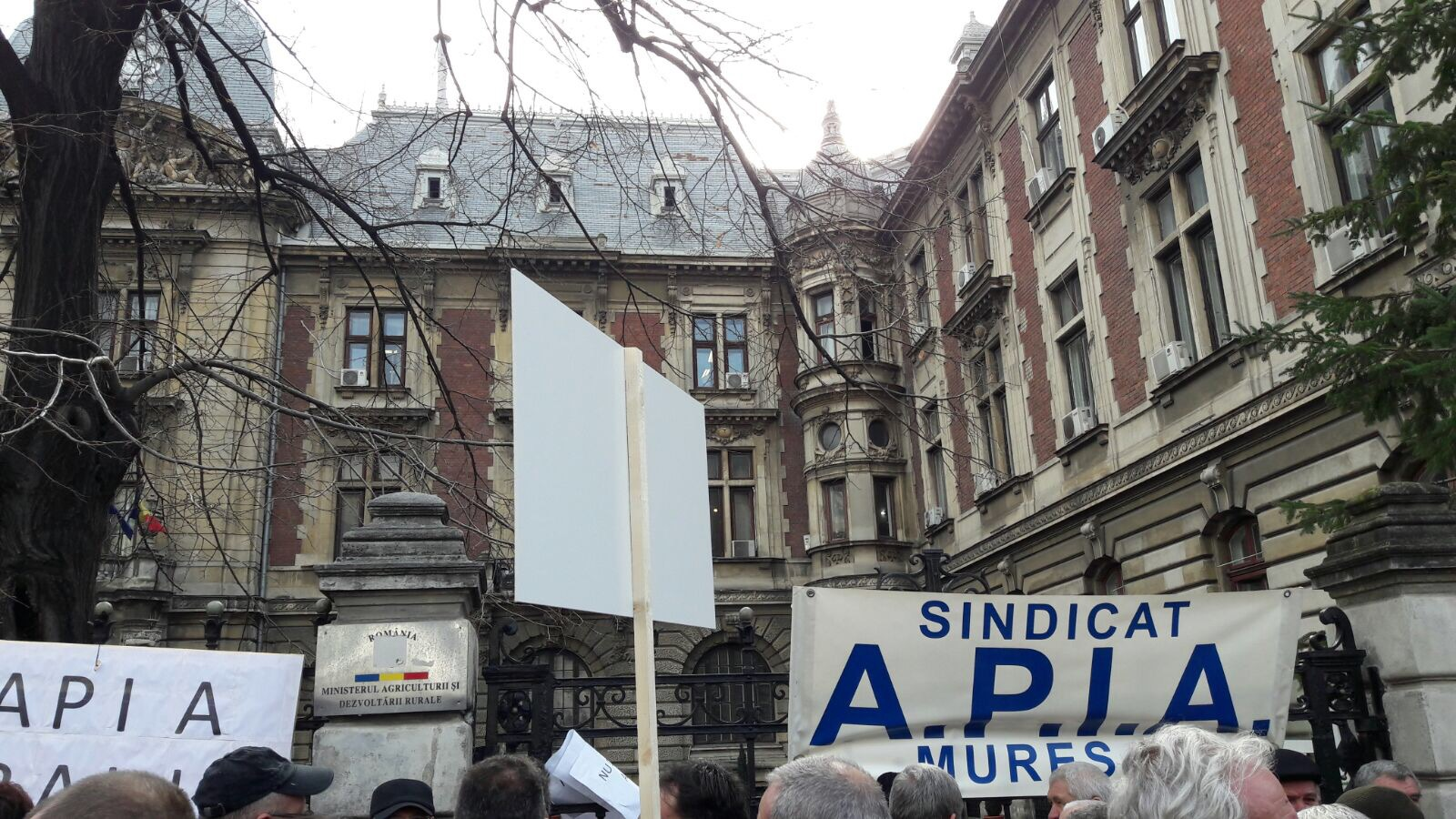 Sute de angajaţi APIA protestează în faţa ministerului Agriculturii, împotriva scăderilor salariale