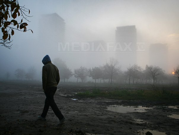 Şase judeţe se află sub cod galben de ceaţă. Vizibilitatea poate scădea chiar şi sub 50 de metri
