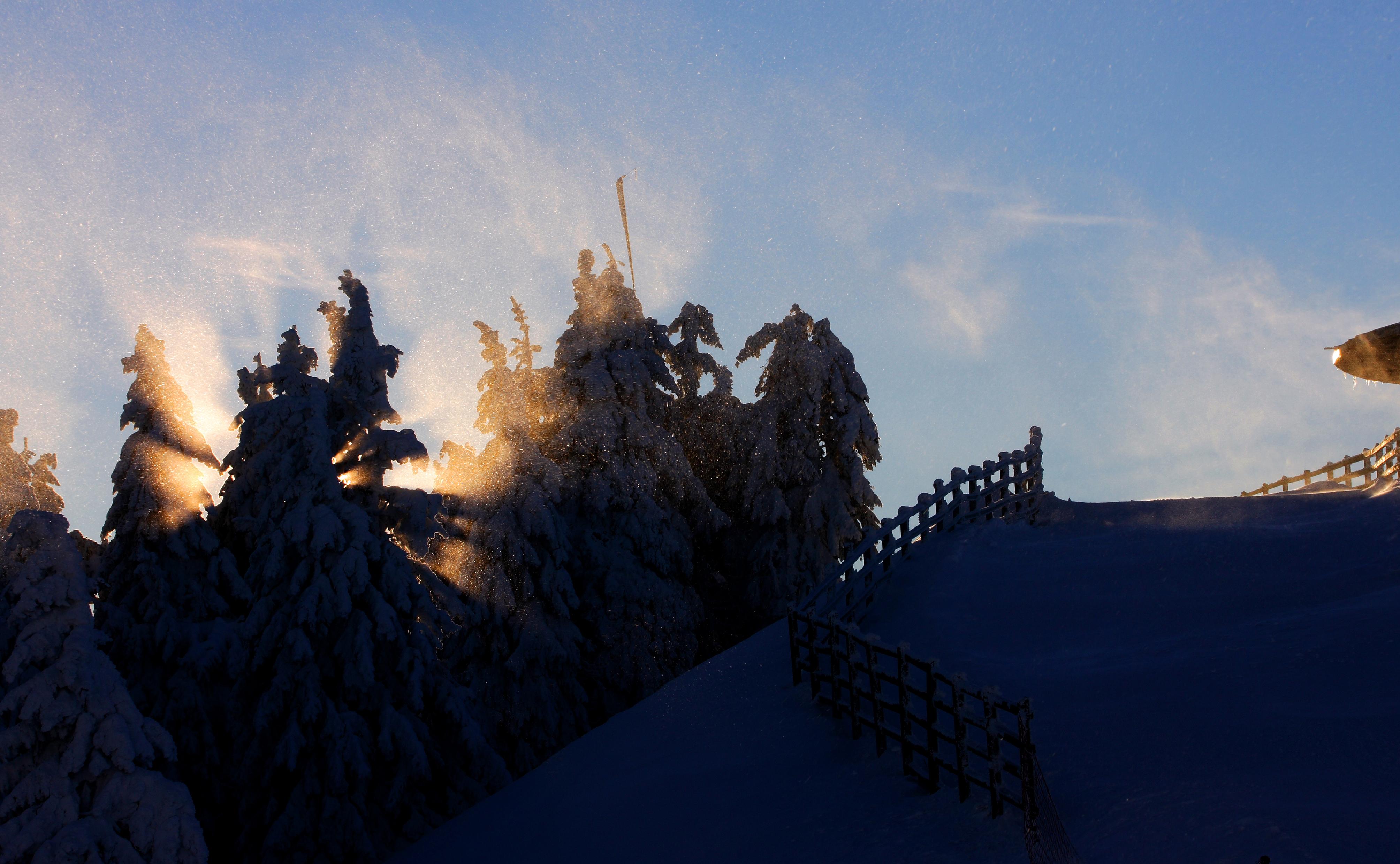 Opt copii şi doi instructori de schi, coborâţi de la Cabana Postăvaru de salvamontişti, după ce au fost surprinşi de ceaţă şi întuneric / Unii dintre ei se aflau într-o zonă unde accesul era interzis