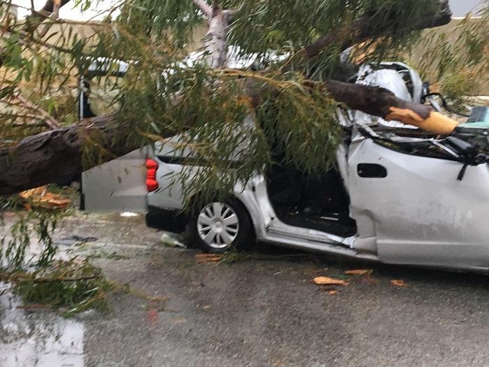 Un cetăţean român a murit şi o femeie a fost rănită în Malta, după ce un copac a căzut peste maşina în care se aflau/ MAE: Starea rănitului este stabilă - FOTO