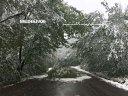 Imaginea articolului Avertizare cod galben de vânt în judeţul Caraş-Severin / Ce alte zone sunt vizate de intensificări ale vântului, dar şi de ninsori