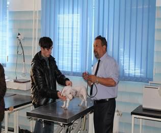 """Imaginea articolului INTERVIU cu medicul veterinar Florin Leca, cel care a înfiinţat prima clinică de cardiologie veterinară: """"Mă număr printre românii fericiţi care vin în fiecare zi cu plăcere la muncă"""""""