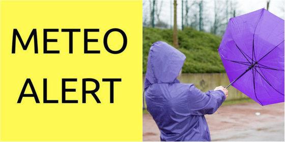 Imaginea articolului Cod galben de vânt puternic | Judeţele aflate sub atenţionarea meteo. Viteza vântului poate atinge în unele zone chiar şi 100 km/oră
