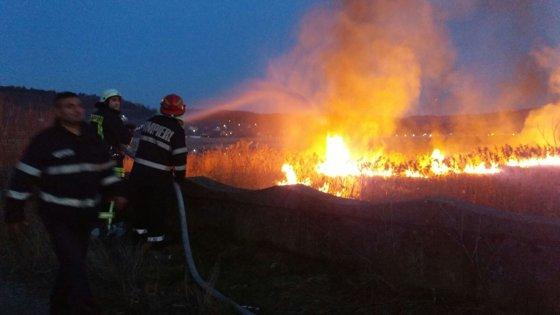 Imaginea articolului Zeci de turişti, evacuaţi în urma unui incendiu de vegetaţie izbucnit lângă Cetatea Poenari din Argeş