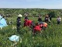 Imaginea articolului Elicopter cu două persoane la bord, PRĂBUŞIT în Turda/ UPDATE: Un bărbat a fost transportat la spital - FOTO
