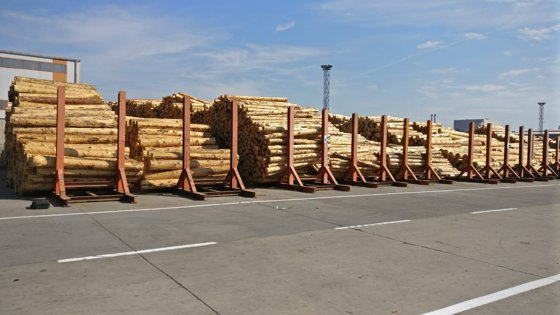 Percheziţii la sedii ale firmei Schweighofer Holzindustrie, într-un dosar privind afaceri ilegale cu lemn. Prejudiciul, estimat la 25 de milioane de euro / Reacţia Schweighofer Holzindustrie FOTO