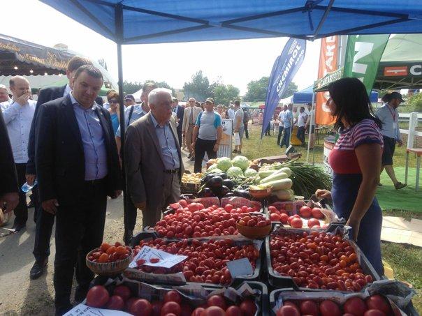 Imaginea articolului Petre Daea: Întreb de preţul roşiilor. Am un respect deosebit pentru buzunarul consumatorului | FOTO