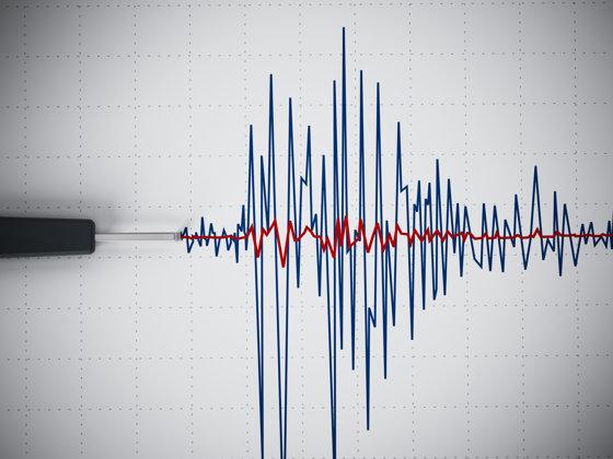 Imaginea articolului Cutremur cu magnitudinea 3,7 pe scara Richter în judeţul Buzău