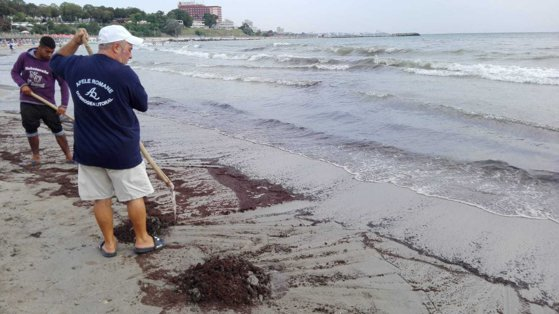 Picture of the article Oil pollution at Mangalia. A beach was closed
