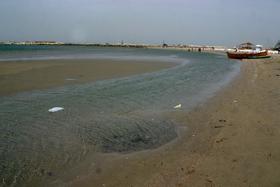 Marea Neagră s-a retras de la ţărm cu până la 20 de metri din cauza vântului puternic